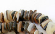 Square Cut, 7/8mm, Brown Lip Shell beads, TROPICAL SHELL BEADS