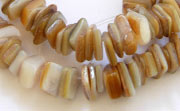 Square Cut, 7/8mm, Gold Lip Shell beads, TROPICAL SHELL BEADS