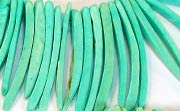 Indian Stick, 38mm, Coco, Turquoise beads, DYED COCONUT BEADS