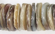 Heishi, 20mm, Hammer Shell beads, TROPICAL SHELL BEADS