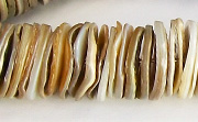 Heishi, 16mm, Kabibe Shell beads, TROPICAL SHELL BEADS