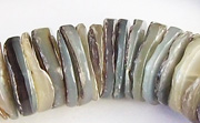 Heishi, 16mm, Hammer Shell beads, TROPICAL SHELL BEADS